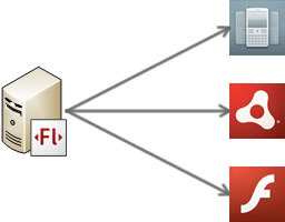 Adobe Flash Media Server e Flash Platform